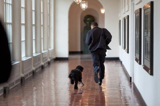 March 2009 – Running down the White House's East Colonnade with Bo, the family dog
