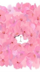 cute phone wallpapers backgrounds iphone pink background cat pretty flowers flower floral pixelstalk cats heart technology screen galaxy kitty