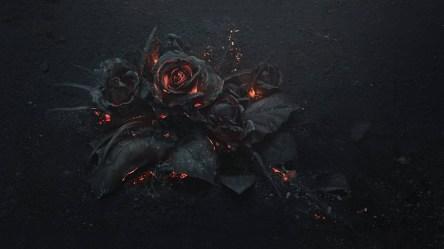 gothic rose desktop hd fire laptop wallpapers gothique roses flowers fond backgrounds bunga ecran mawar fleurs feu px mobile