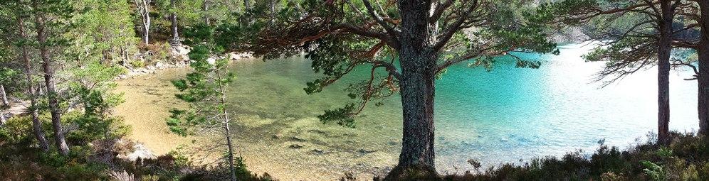 green loch