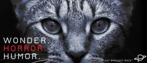 A creepy staring cat. Superimposed are the words WONDER. HORROR. HUMOR. Horror is in red.