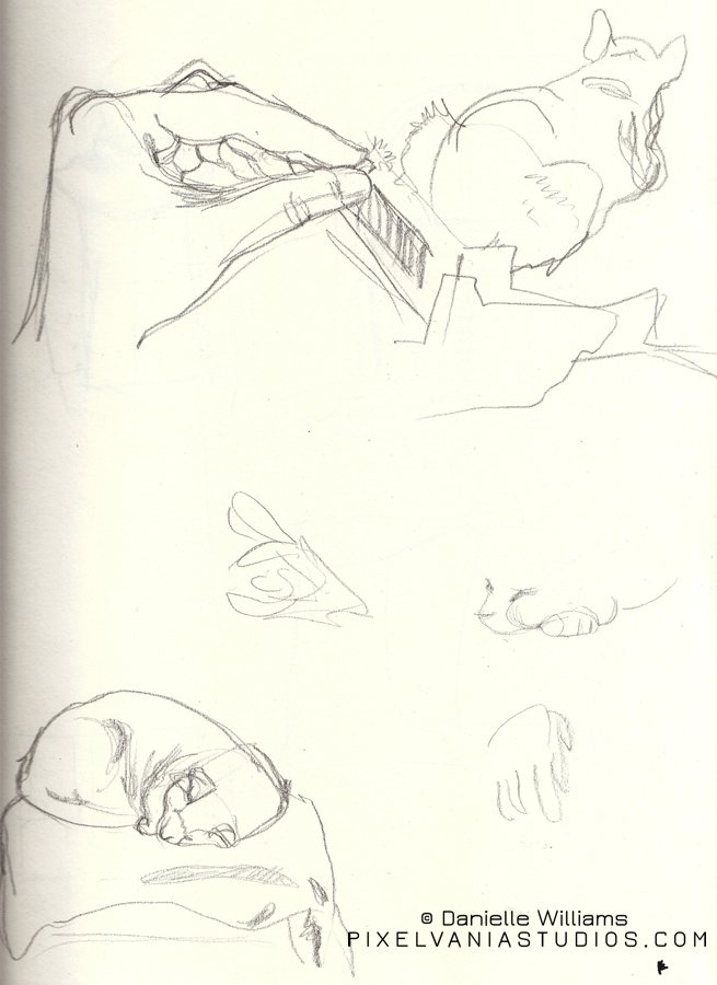 Sketches of hands and my cat