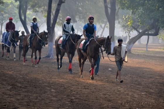 Jockeys, handlers and horses at Mahalakshmi Race Course Mumbai