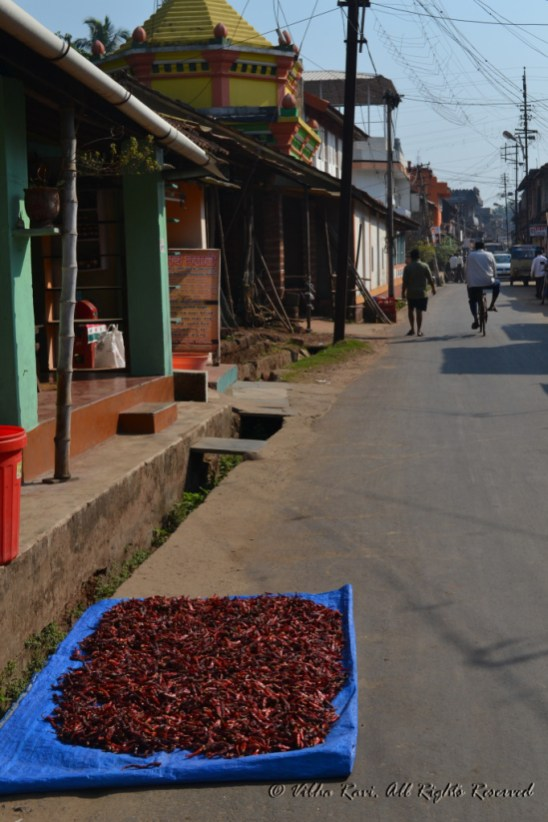Chillies drying on the road in Malvan