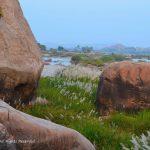 By the Tungabhadra river in Anegundi village