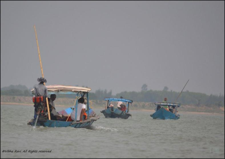 Tourist boats on Chilika Lake