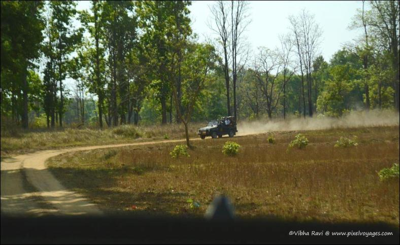Protected forest areas in India generally don't permit private vehicles inside