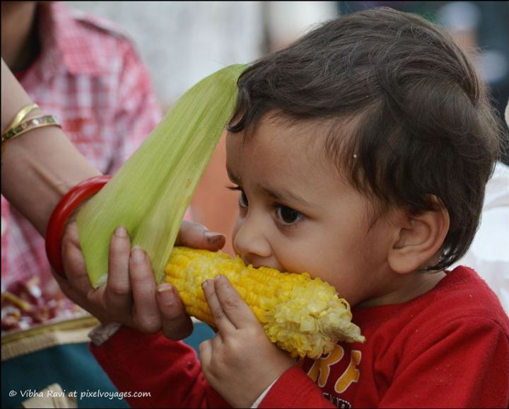 Indian child eating corn on the cob