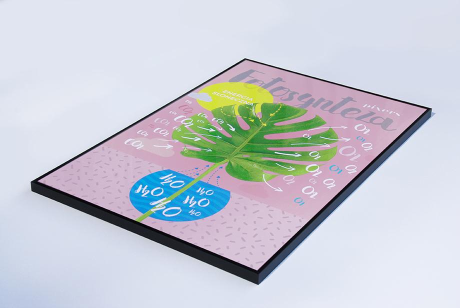 Uczniowie poznają i zrozumieją złożony proces fotosyntezy dzięki prostemu i estetycznemu schematowi.