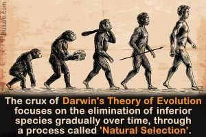 Example of secular education: Darwin's Theory of Evolution that claims evolution doesn't involve God but only 'Natural Selection'