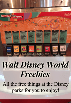 Disney Park Freebies