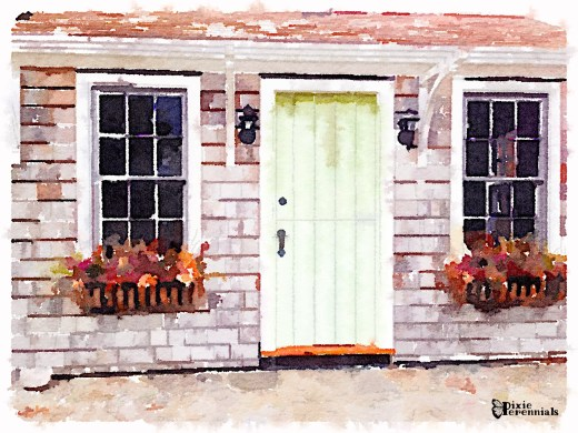 Garden shed with window boxes -pixieperennials.com