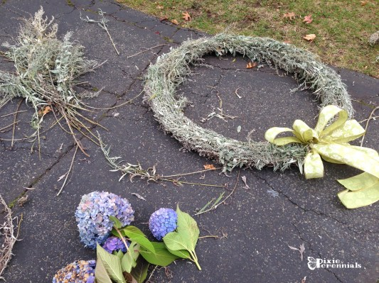 Hydrangea & Artemisia wreath in the making. - pixieperennials.com