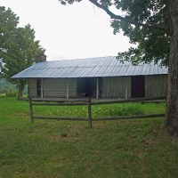 The Dogtrot