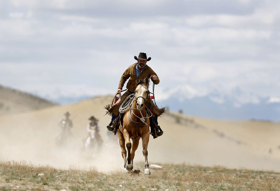 The last cowboys  Others