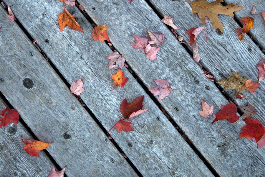 Imagen gratis tablas de madera madera de color gris