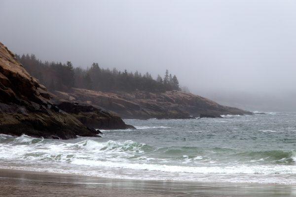 free rocky beach nature