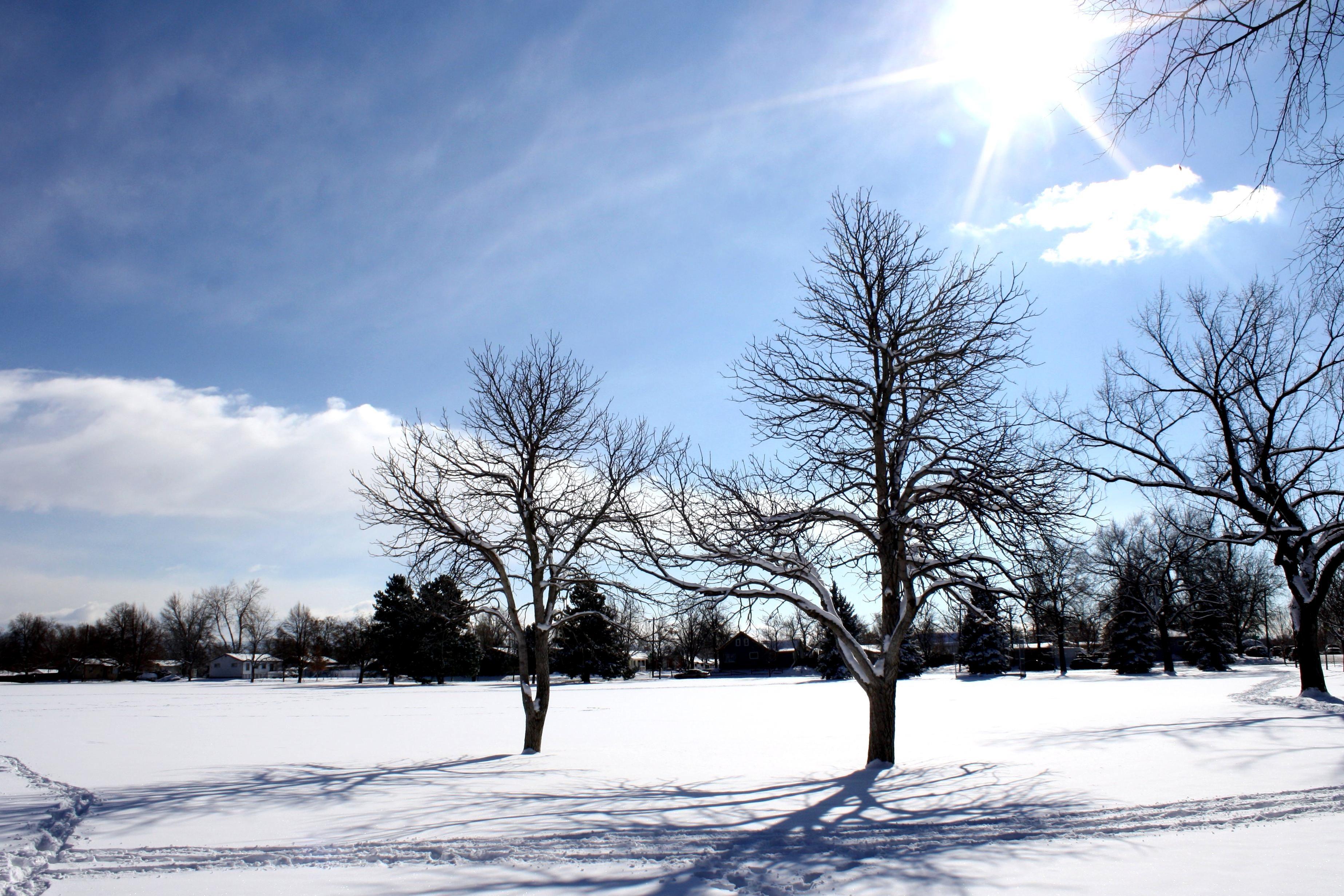 Hd Video Camera Wallpaper Free Picture Sunny Day Sunshine Winter Snow