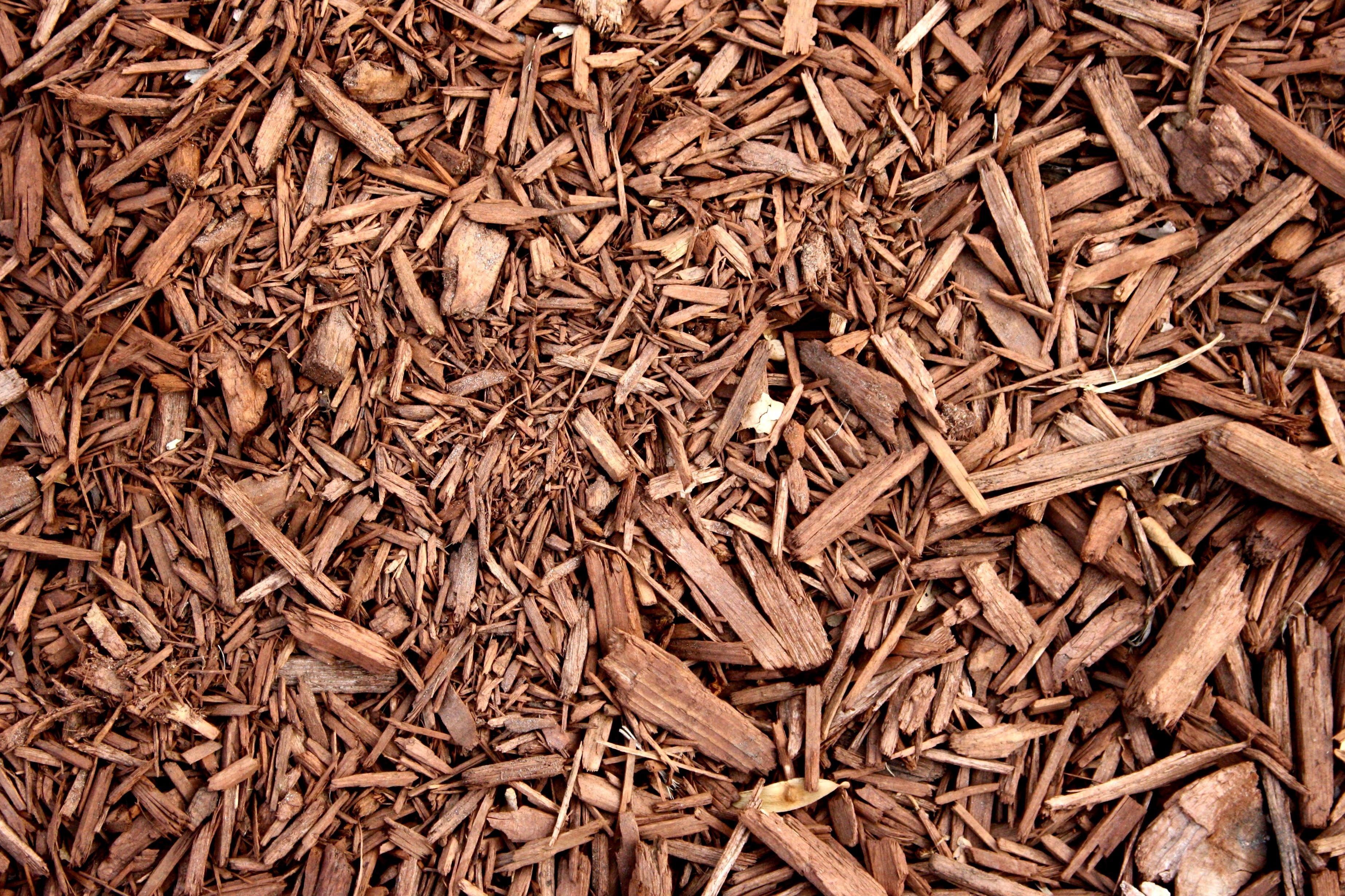 Free Picture Brown Wood Chipboard Mulch Texture