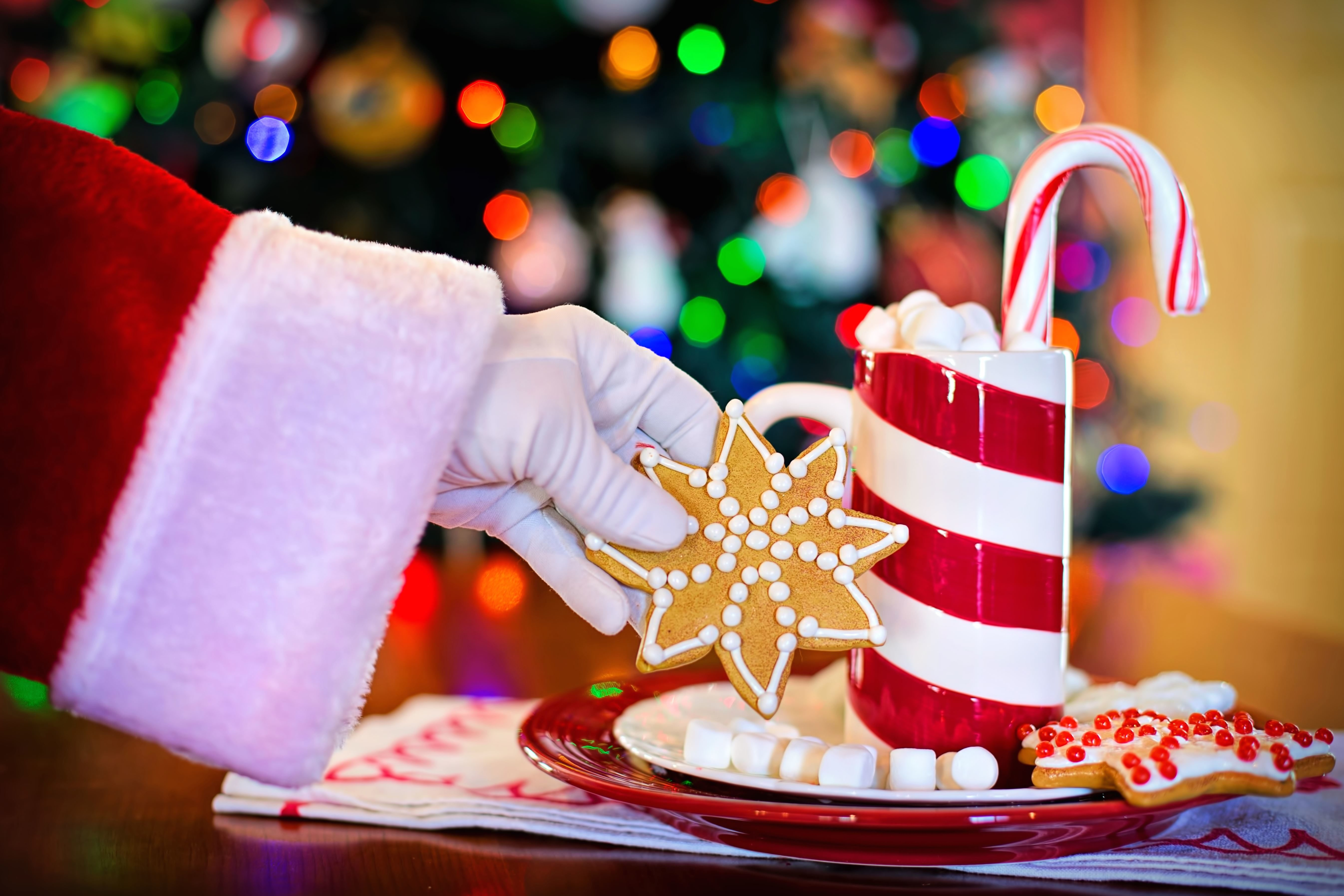 Free picture Christmas surprise sweet dessert