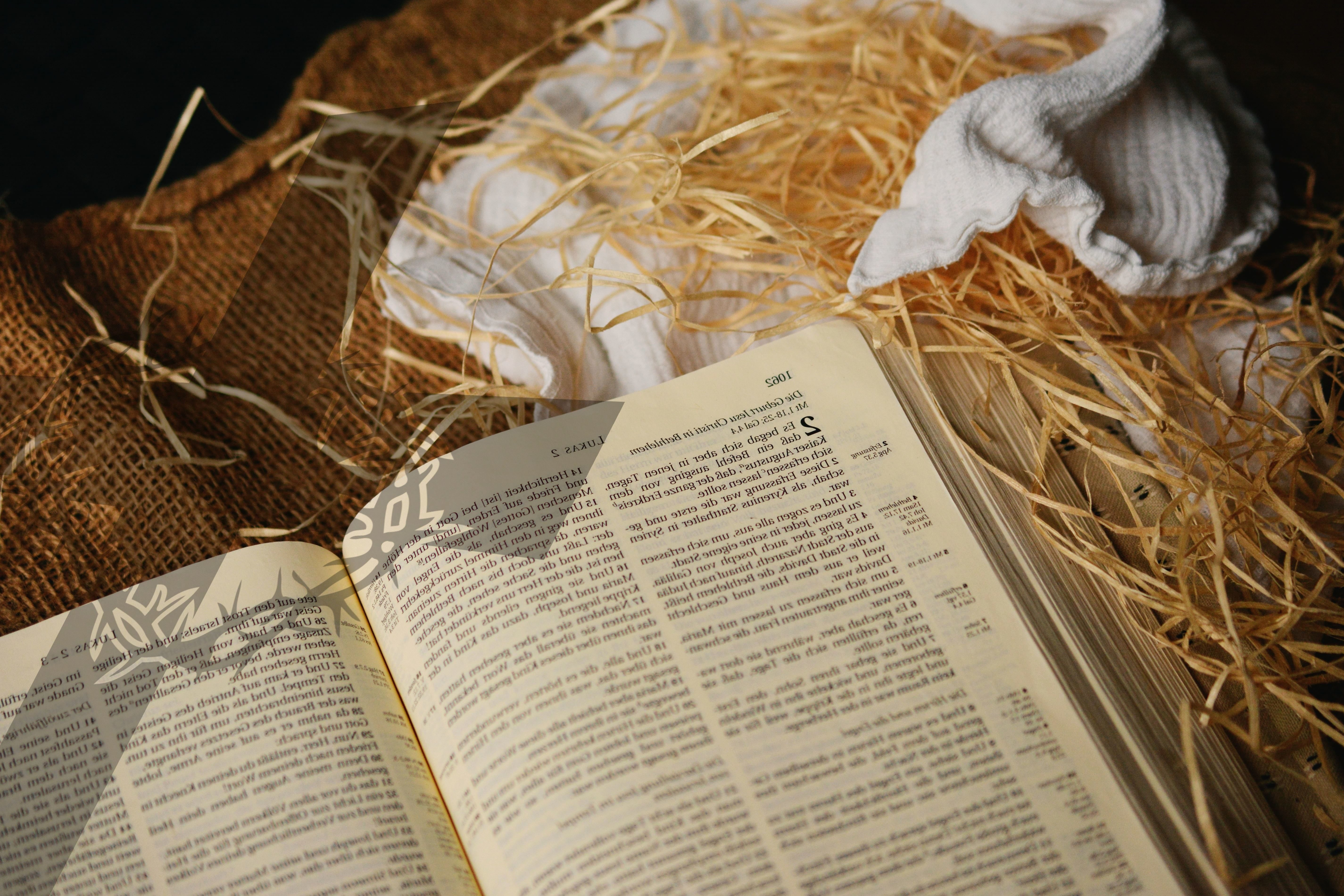 Free picture bible book business straw text