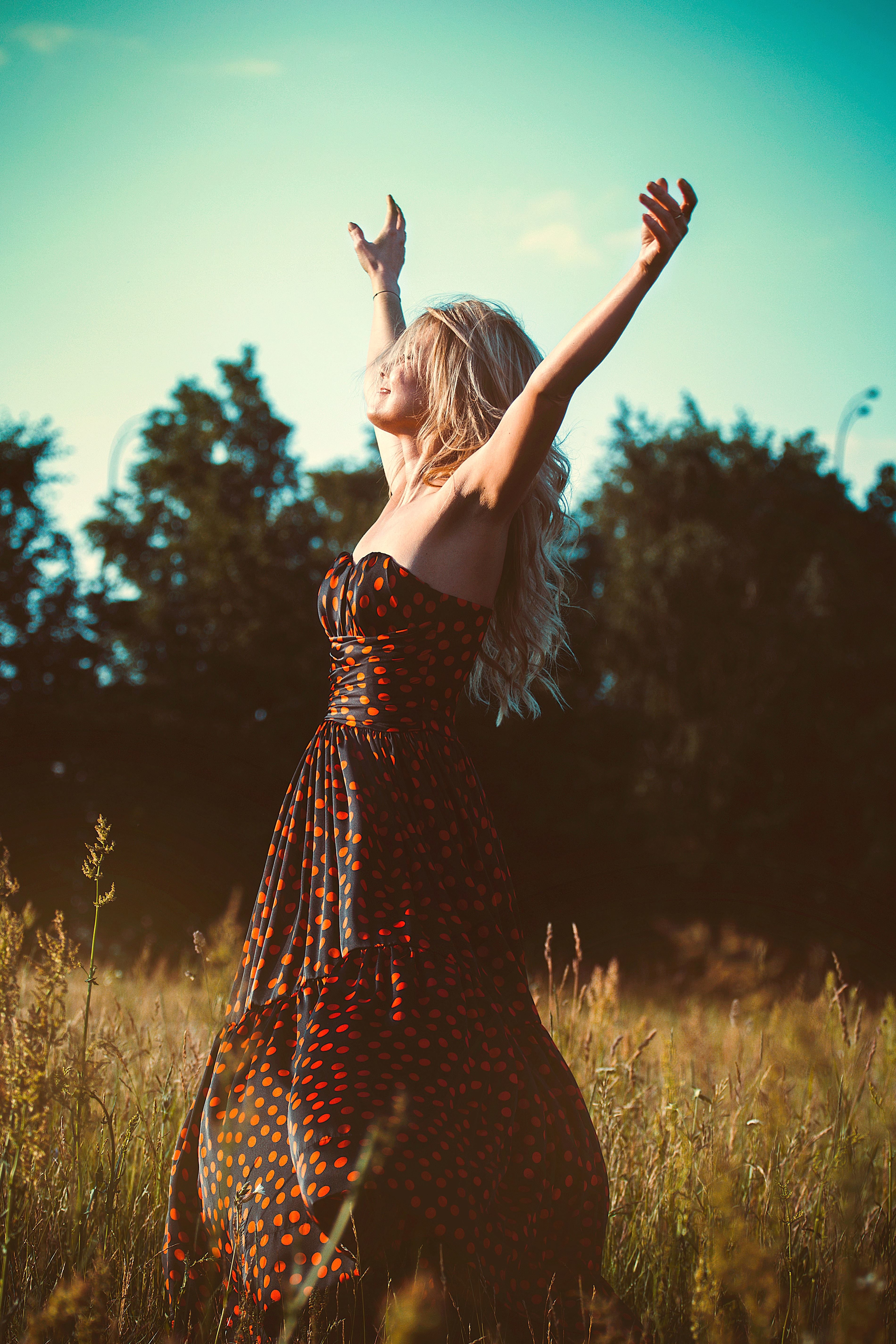 Free picture dress fashion female freedom girl grass