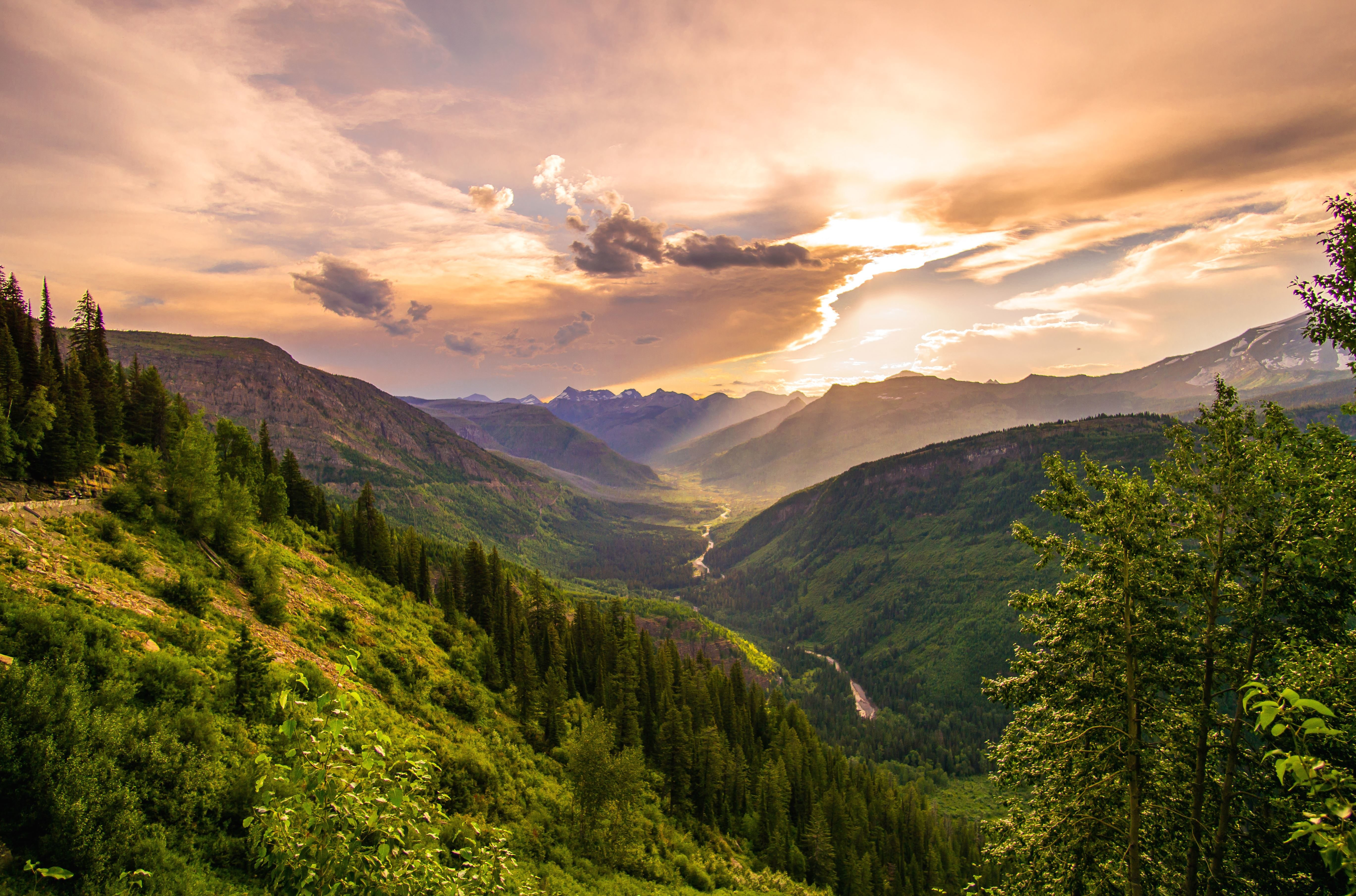 Free picture mountains nature pine tree plant sky tree