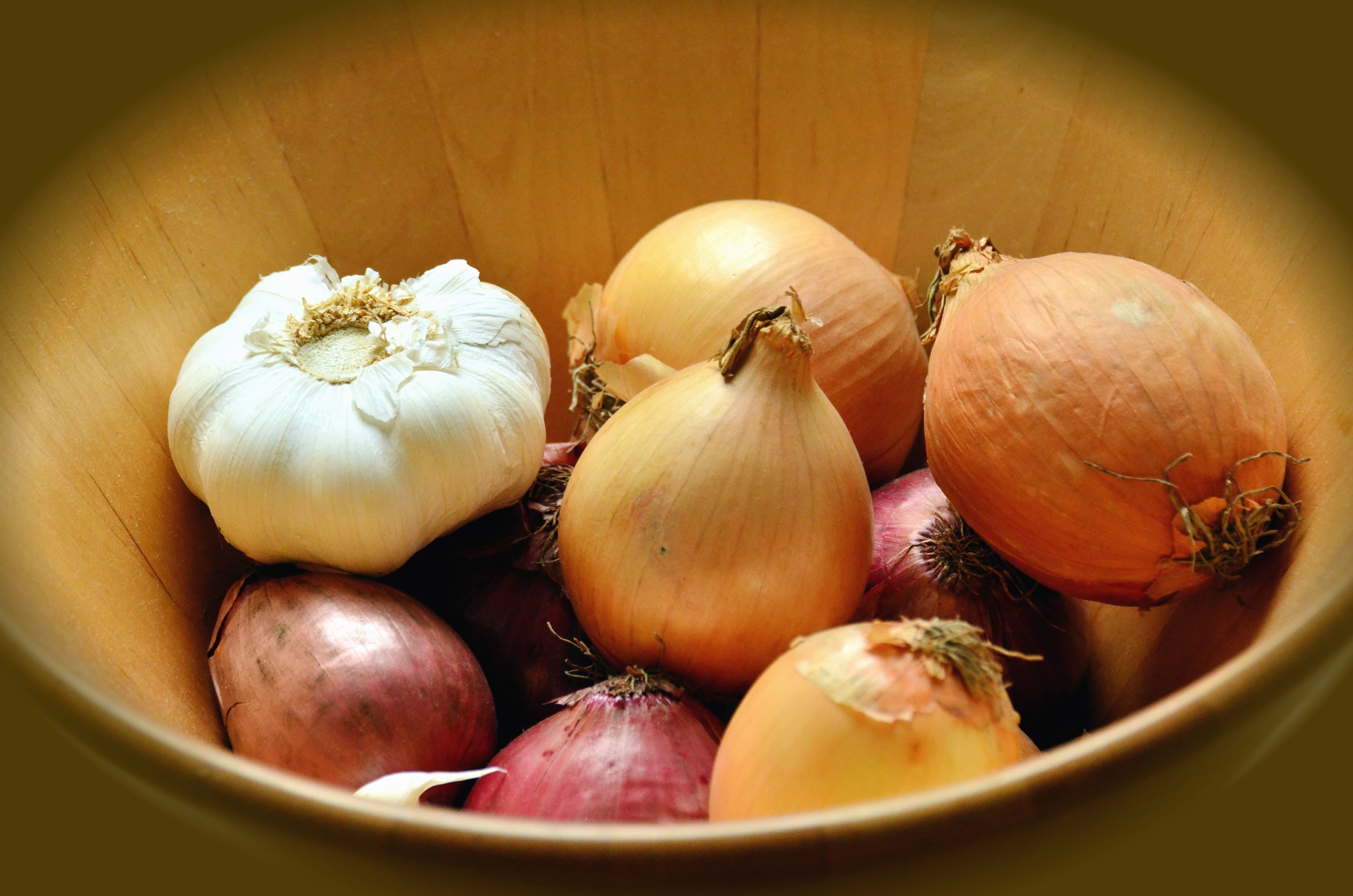 Free picture garlic onion bowl vegetable food