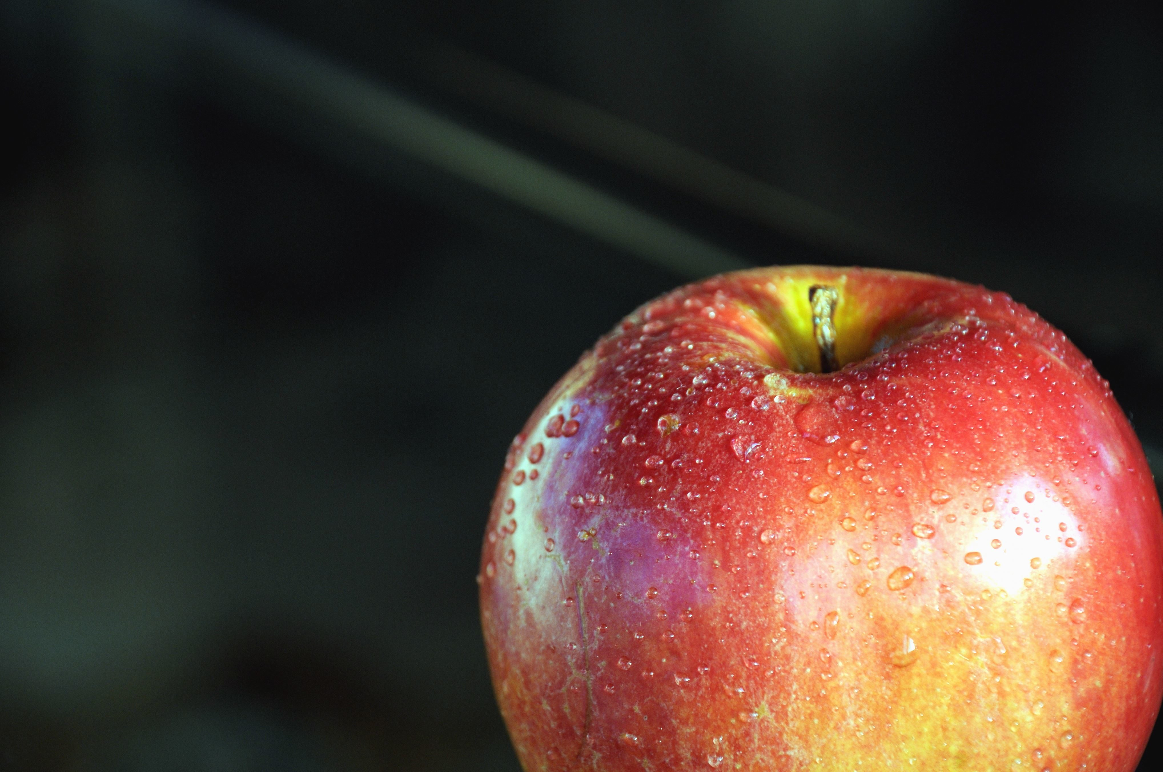 Free picture apple fruit organic water dew wet