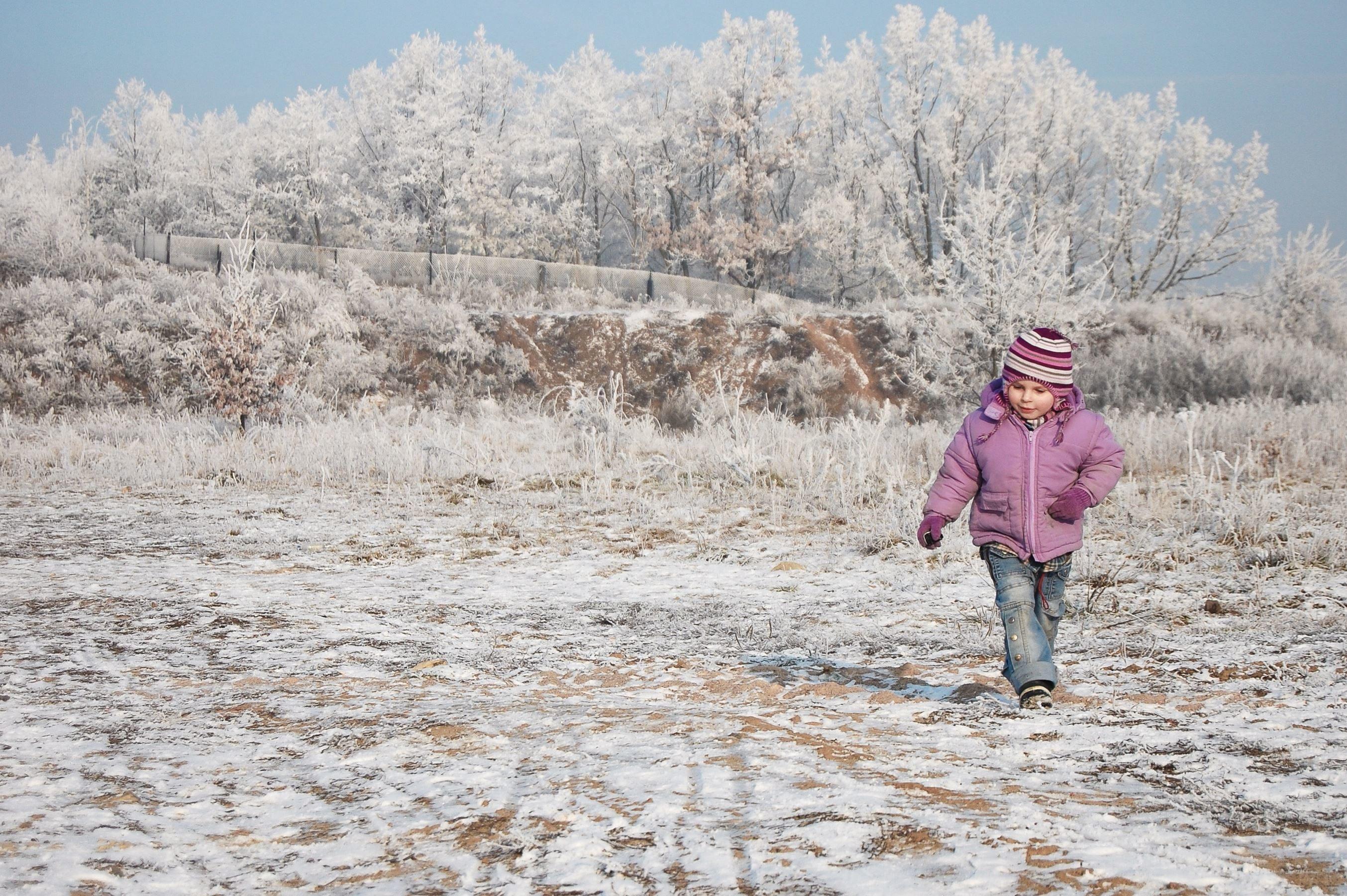 Free picture child tree winter snow cold hat landscape