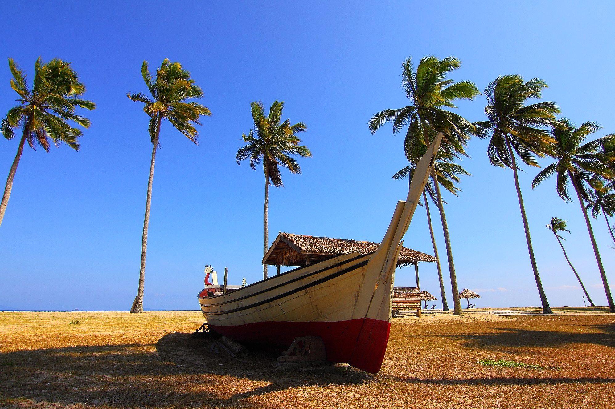 Imagen gratis Palmeras cielo azul barco playa cielo