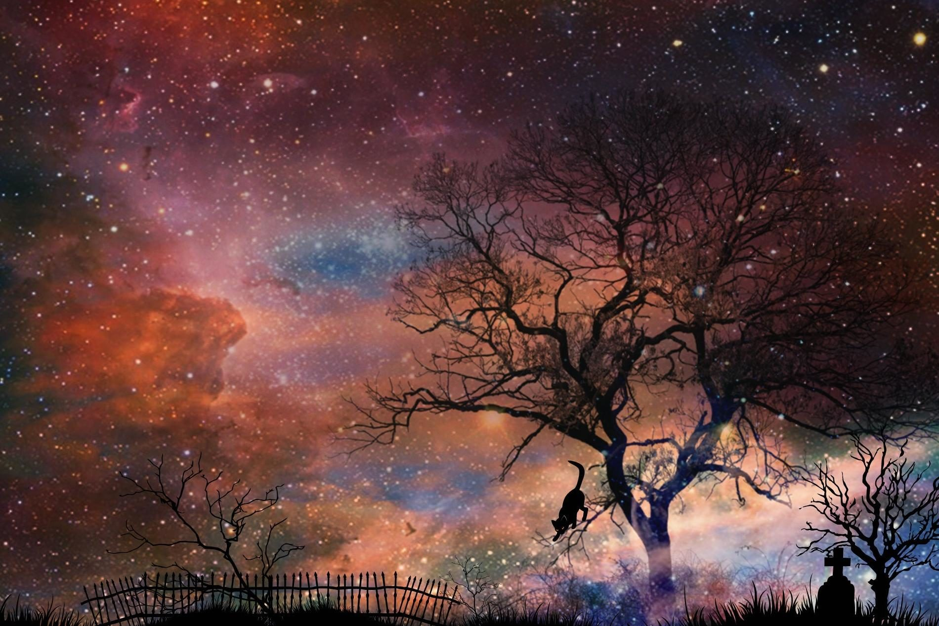 Free picture night photomontage mystery fantasy silhouette landscape