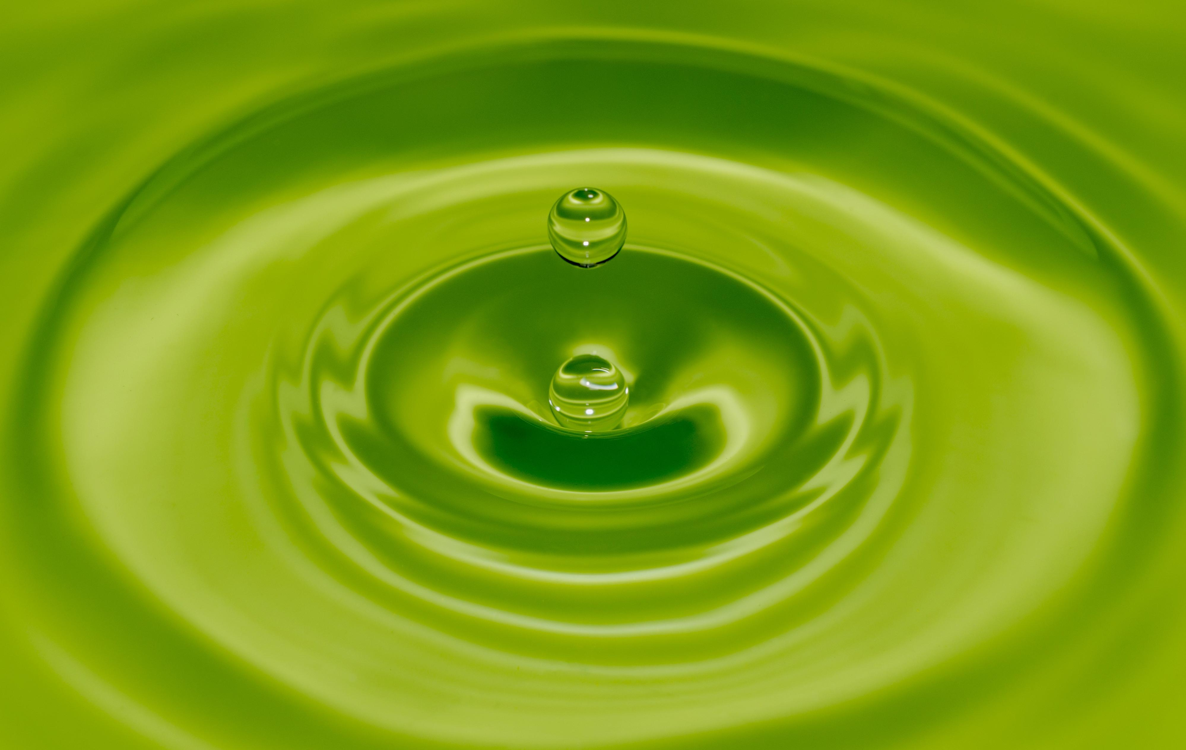 Free picture droplet abstract rain wet liquid bubble green