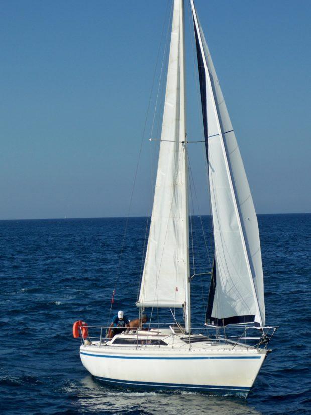 Image Libre Voilier Yacht Voile Eau Bateaux Mer