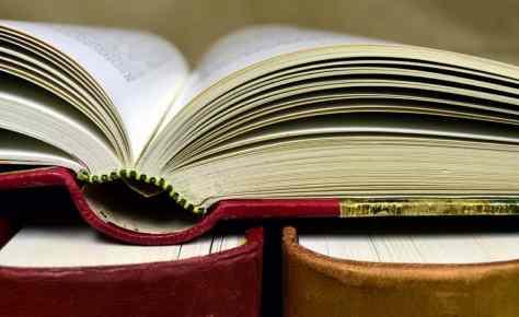 知恵、書籍、教育、知識、文学、図書館、研究