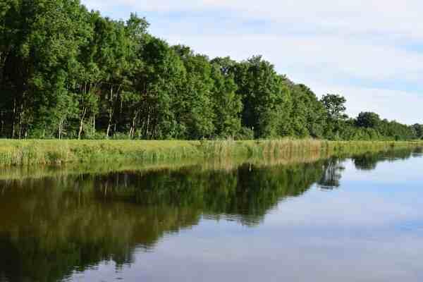 free riverbank blue sky