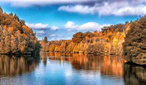 free water landscape