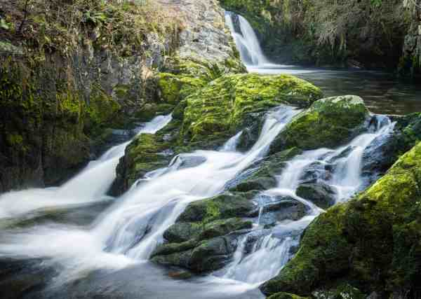 free nature water landscape