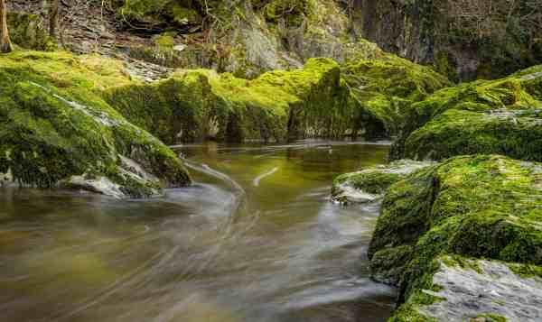 free stream water landscape