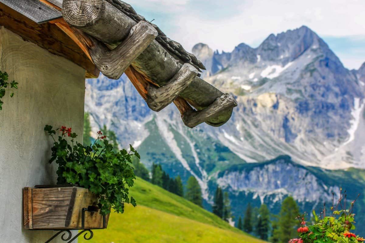 Image libre montagne ciel bleu pot de fleurs nature paysage neige extrieur bleu ciel