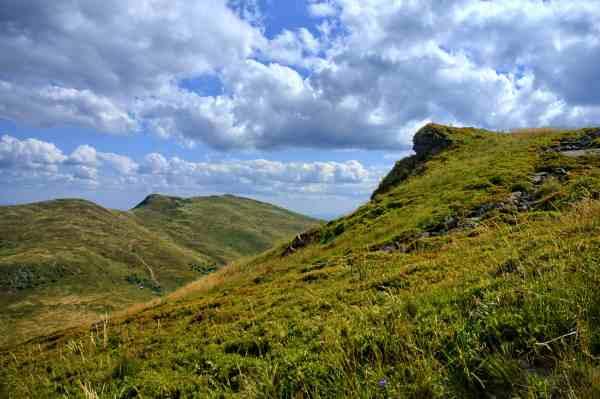 free nature grass hill