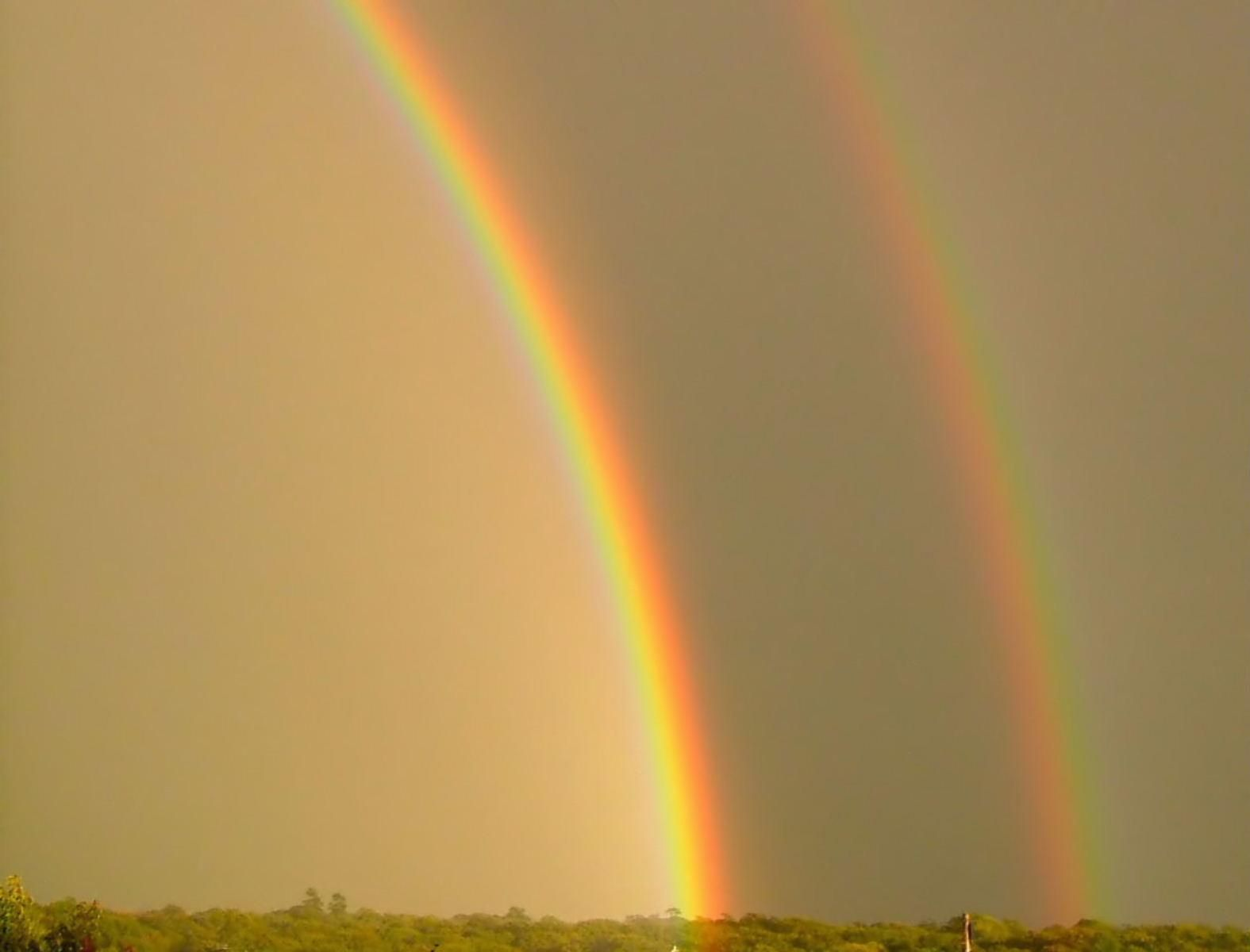 Free picture double rainbow golden sky