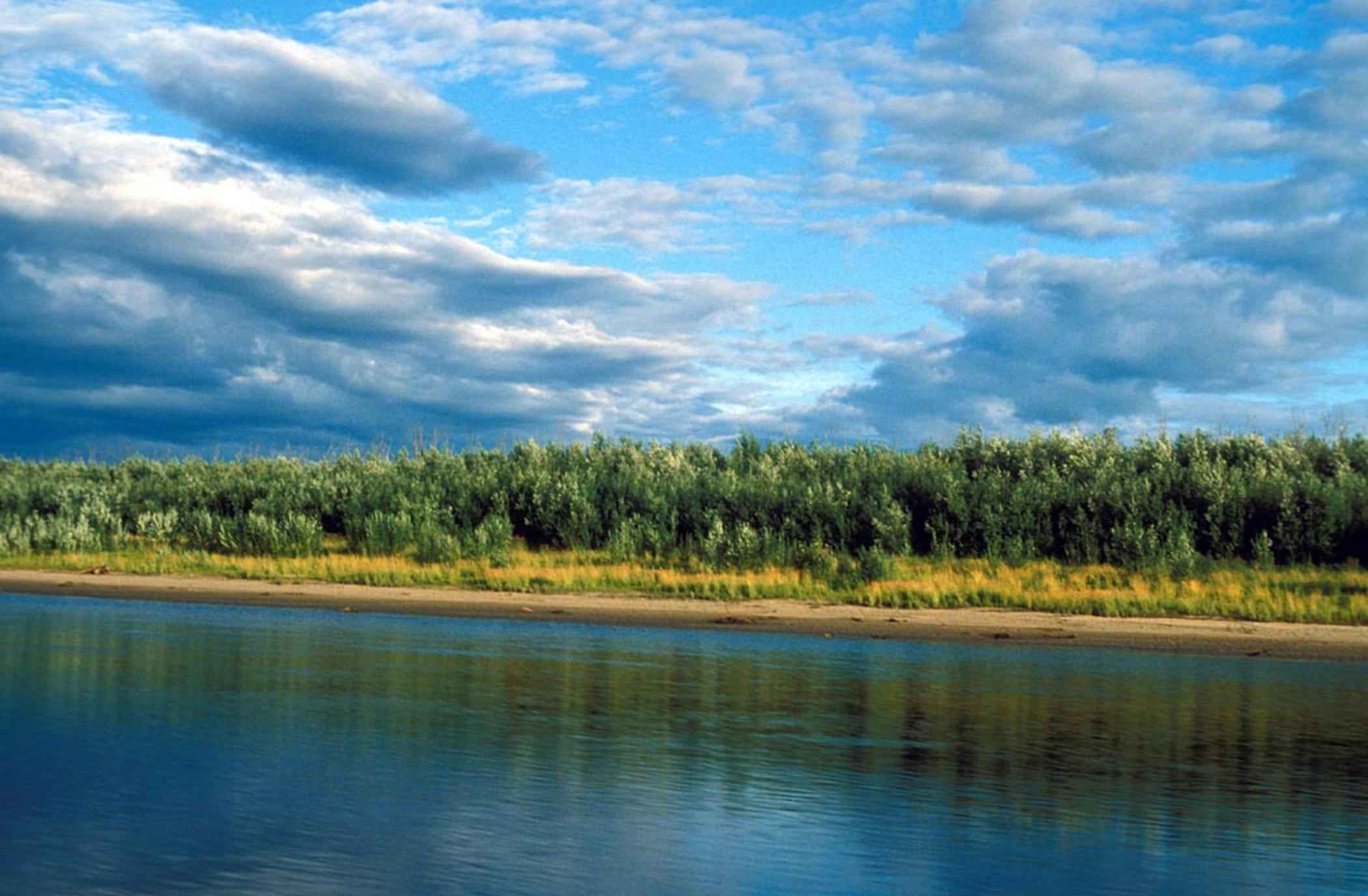 Free picture river summer scenic