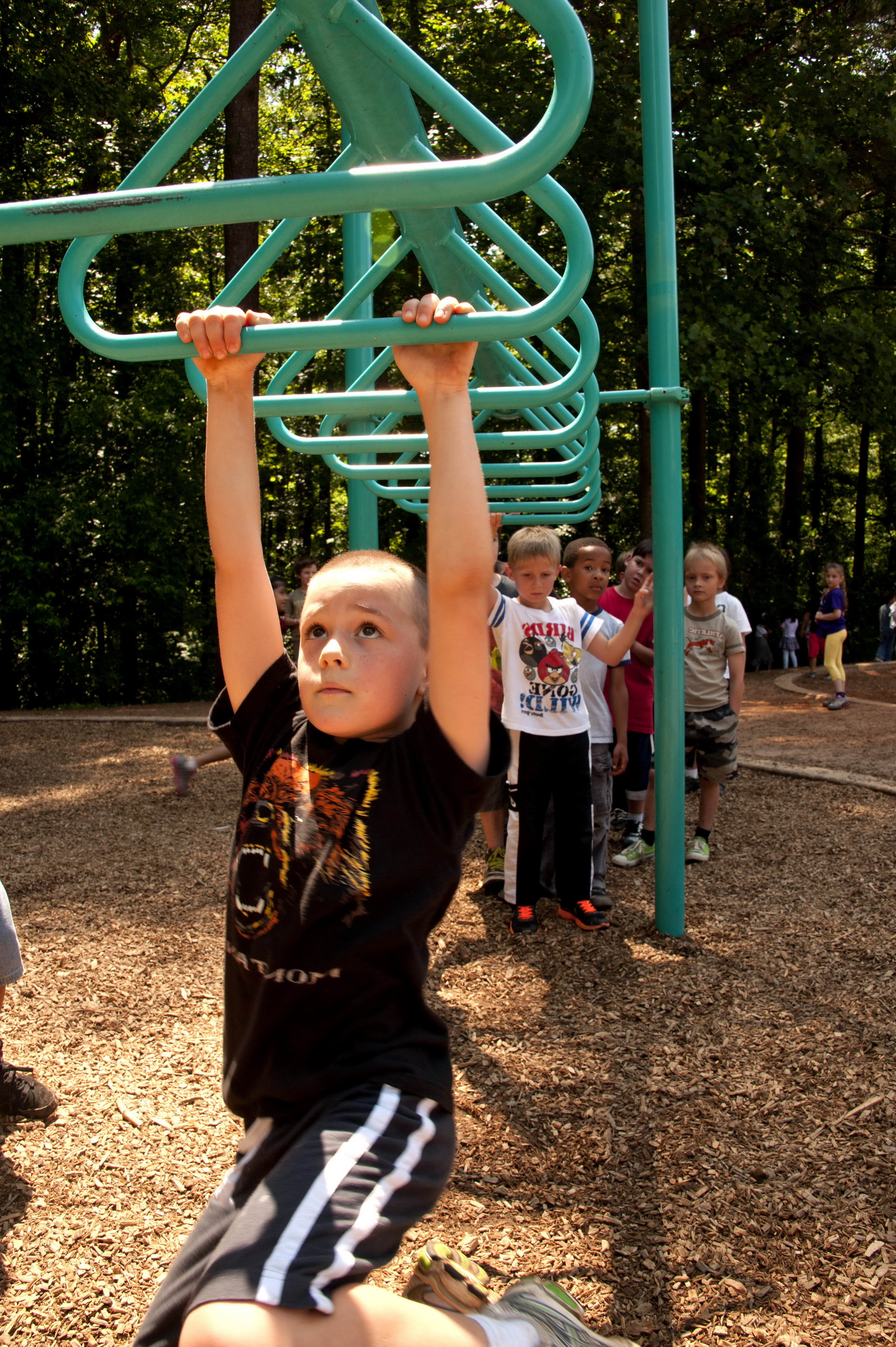 Free Picture Hanging Arms Overhead Ladder Swing