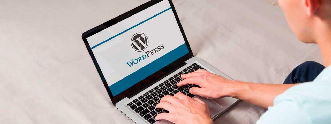PixoLabo - WordPress Page Speed Optimization