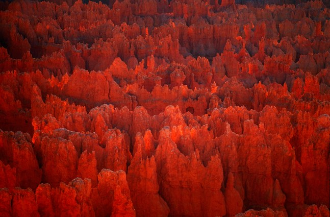 Red Tide of Fire