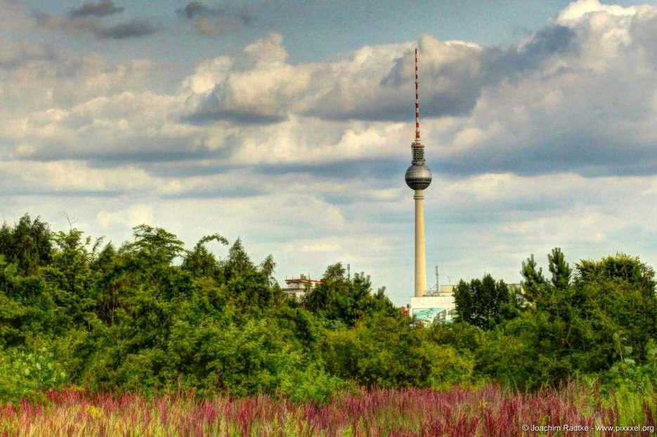 Fotografiert im Park am Nordbahnhof