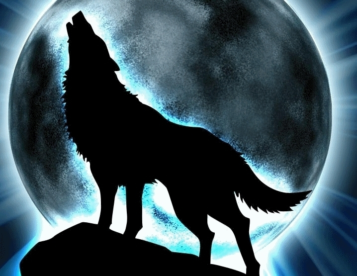 anime wolf howling n2