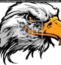 eagle mascot clip art n6 [ 1210 x 1061 Pixel ]