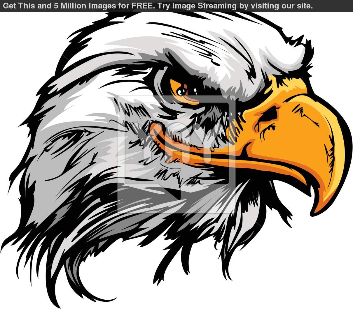 hight resolution of eagle mascot clip art n6